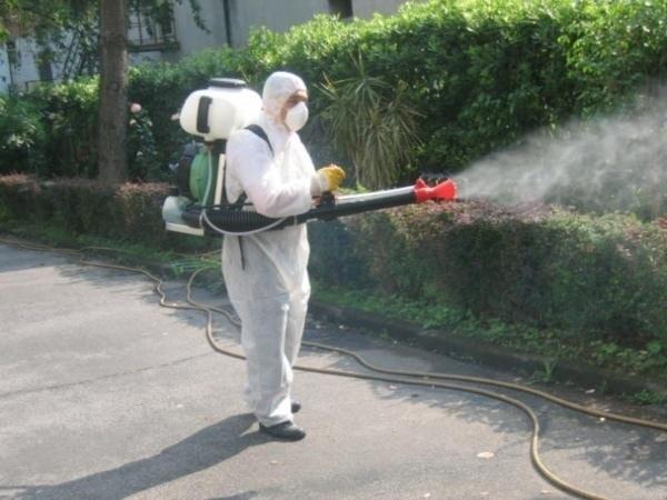 Scatta la disinfestazione contro le zanzare