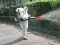 Disinfestazione contro zanzare e pappataci rimandata. Ecco il nuovo calendario