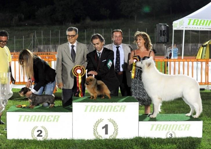4° esposizione canina nazionale di Fabriano